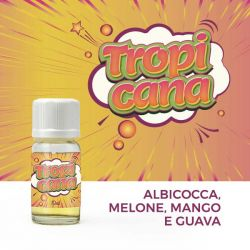 Tropicana Leaves Super Flavor Aroma Concentrato