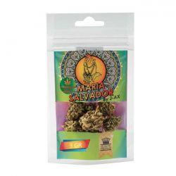 Maria Salvador Legal Weed Cannabis Light 1,5 gr