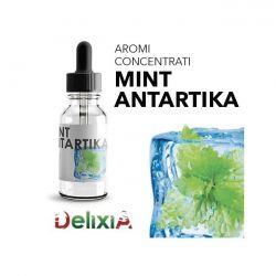 Delixia Aroma Mint Antartika