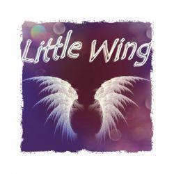 Little Wing Aroma T-Svapo