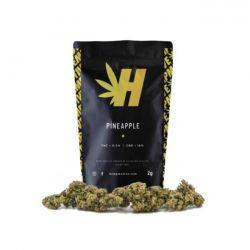 Pineapple Cannabis Light Hempmotive 2 gr.