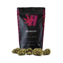 Strawberry Hempmotive Cannabis Light 2 gr Canapa Legale