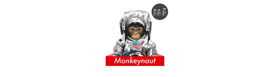 Monkeynaut IT