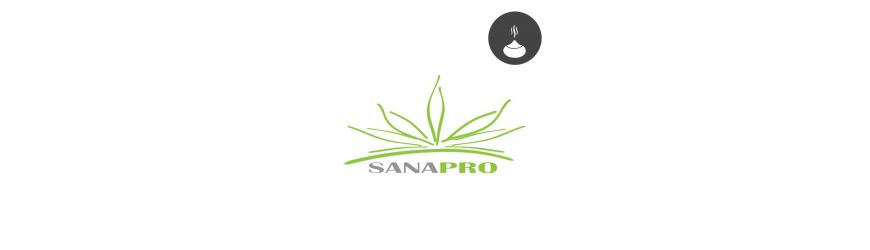 Sanapro IT