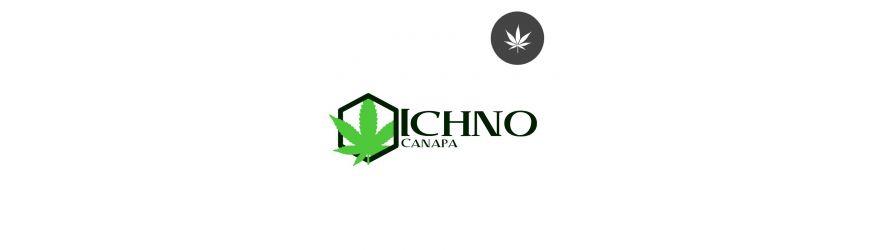 Ichno Canapa