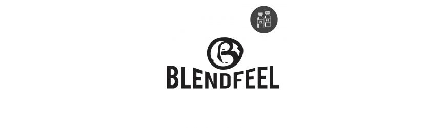 BlendFeel IT